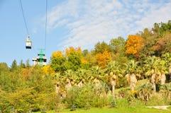 Arborétum de Sotchi photographie stock