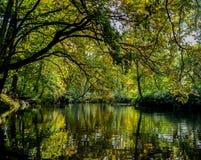 Arborétum de Winkworth photographie stock libre de droits