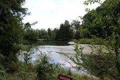 Arborétum national des Etats-Unis photo libre de droits