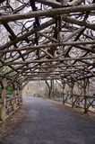 Arbor in Central Park. A rustic arbor in Central Park in New York City Stock Photo