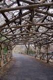 Arbor in Central Park Stock Photo