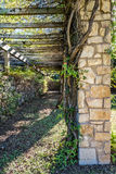 Arbor Covered Pathway with Vines Royalty Free Stock Photo