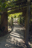 Through An Arbor of Dappled Sunlight Royalty Free Stock Image