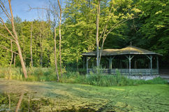 Arbor in a forest. Wooden arbor on a pond shore in the middle of forest, Masuria, Poland Royalty Free Stock Photos