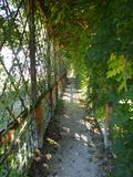 Arbor in a garden. Arbor in a beautiful garden stock photography