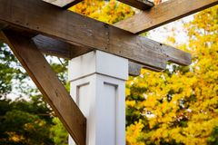 Arbor in a garden. View looking up at an arbour against the yellow colors of fall Royalty Free Stock Image
