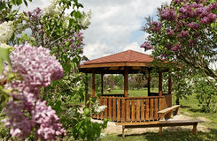 Arbor in a garden. Wooden arbor in a lilac garden Royalty Free Stock Photos