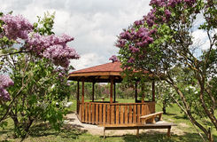Arbor in a garden. Wooden arbor in a lilac garden Stock Photo