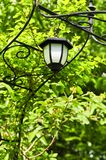 Arbor with lantern. Wrought iron arbor with lantern in lush green garden Royalty Free Stock Photography