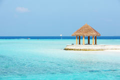 Arbor on Maldives beach Royalty Free Stock Photo