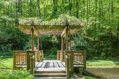 Arbor Over Dock. Small wood bridge at a lake in green forest Stock Photography