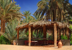 Arbor among palm trees in Morocco.  Royalty Free Stock Photos