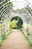 Arbor with path. White arbor with path at garden Royalty Free Stock Image