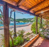 Arbor by the sea in Poltu Quatu. Sardinia Royalty Free Stock Photo