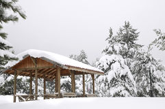 Arbor In Snowy Winter Forest Royalty Free Stock Photography
