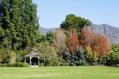 Arbor and trees with fall color. Saw at Arcadia, Los Angeles, California Stock Photos