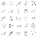 Arboraceous icons set, outline style Stock Images
