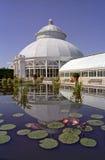 Arboratum @ botanische Gärten stockbild