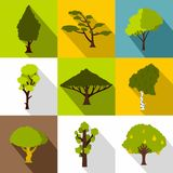 Arboreal plant icons set, flat style Royalty Free Stock Photo