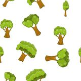 Arboreal plant pattern, cartoon style Stock Photography