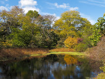 Arboreto de Arnold, Boston Imagens de Stock Royalty Free