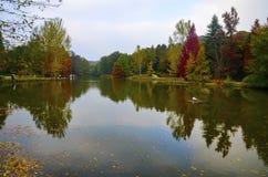 Arboreto de Ataturk Árvores do outono em torno do lago imagens de stock royalty free