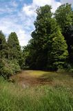 Arboretum Royalty Free Stock Photo