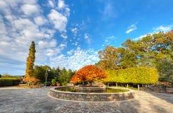 Arboretum Stock Images