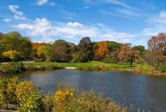 arboretum Arnold boston fotografia stock