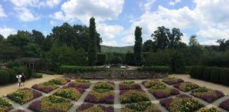 Arboretum. Flowers Asheville clouds bushes Royalty Free Stock Photos