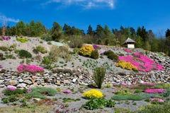 Arboretum in Paseka durch Sternberk, Tschechische Republik Stockbild