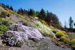 Arboretum in Paseka durch Sternberk, Tschechische Republik Lizenzfreie Stockbilder