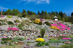 Arboretum in Paseka by Sternberk, Czech Republic. Former garbage dump backfilled with basaltic chippings gave rise to this beautiful arboretum with more than 3 Stock Image