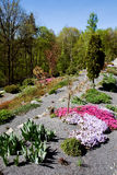 Arboretum in Paseka by Sternberk, Czech Republic. Former garbage dump backfilled with basaltic chippings gave rise to this beautiful arboretum with more than 3 Royalty Free Stock Photos