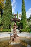 arboretum sochi Arkivfoton
