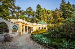 arboretum in Sochi Royalty Free Stock Images