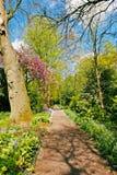 Arboretum Trompenburg Rotterdam Fotografering för Bildbyråer