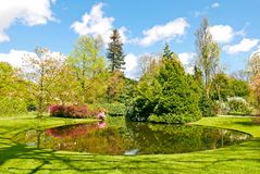 Arboretum Trompenburg Rotterdam Arkivfoton