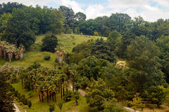 Arboretum of tropical and subtropical plants. Top view of a part of the arboretum with a variety of beautiful tropical plants along the tracks Royalty Free Stock Photos