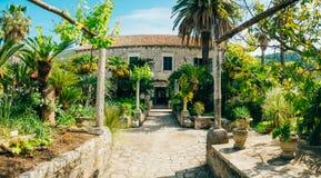 Arboretum Trsteno, near Dubrovnik, Croatia. Stock Images