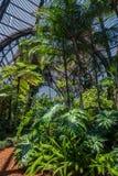 Arboretum und botanischer Garten lizenzfreies stockfoto