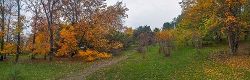 Gloomy autumn in the Arboretum of Sochi. Russia. Arboretum is a Unique and Famous Landmark in Sochi. Park Arboretum in Sochi deservedly has the status of a Stock Photos