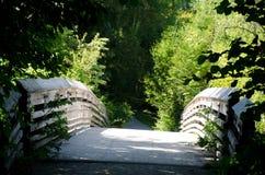 Arboretumslinga till och med en träbro Arkivfoton