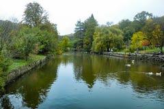 Arboretumu de Ataturk Ağaç com arbustos e o outro li das plantas arborizados Fotos de Stock Royalty Free