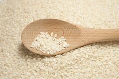 Arborio Rice With Spoon Stock Photos