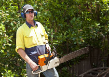 Arborist with chain saw. Prepares to cut down large tree Stock Photos