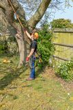 Arborist checking safety ropes royalty free stock images