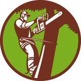 Arborist Tree Surgeon Trimmer Pruner Stock Photos