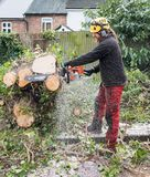 Arborist at work with chainsaw. Arborist or Tree Surgeon at work using a chainsaw to cut up a fallen tree.The tree Surgeon is wearing chainsaw safety equipment royalty free stock photos