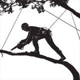 Arboriste illustration libre de droits